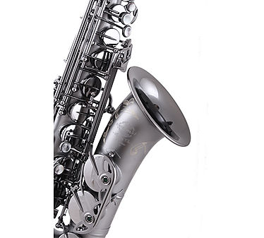 Saxo Alto System'54 Superior Class R-Series Black Ice