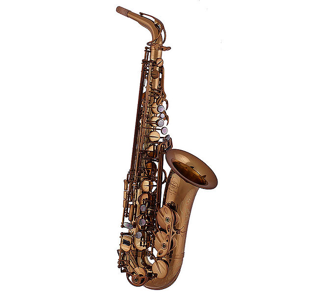 Saxo Alto System'54 Superior Class R-Series Vintage Gold